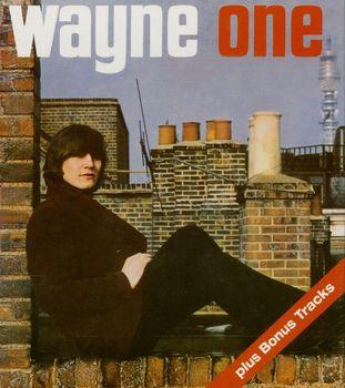 Wayne One.jpg